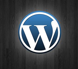 wordpress-designer-irvine